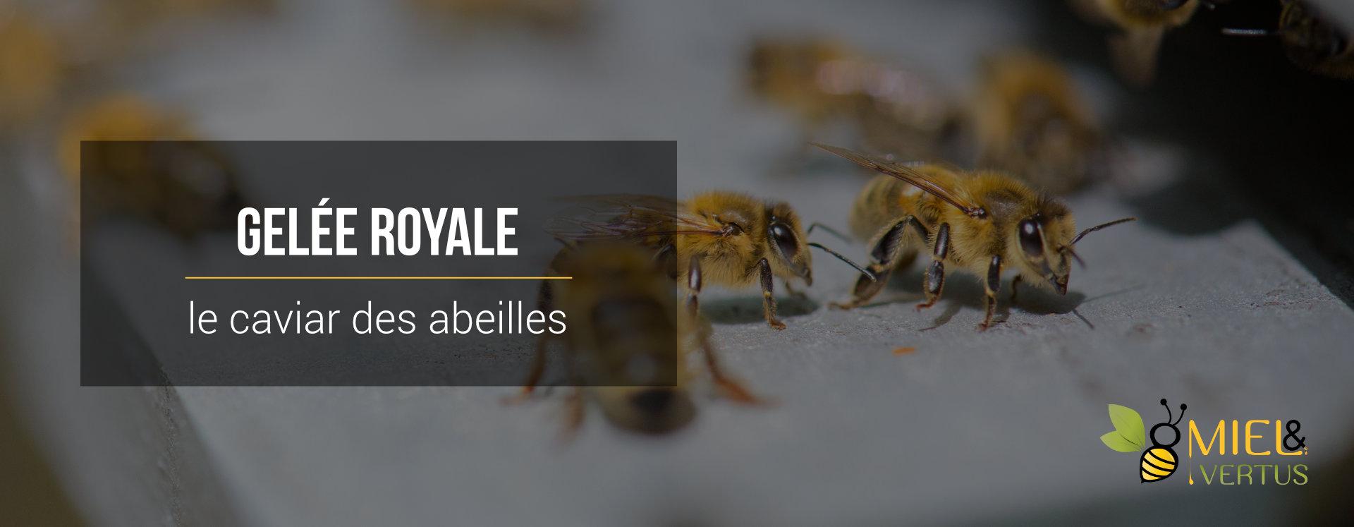 gelee-royale-caviar-abeilles