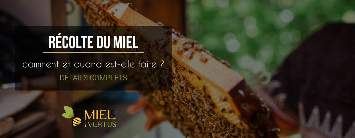 Comment et quand est récolté le miel ?