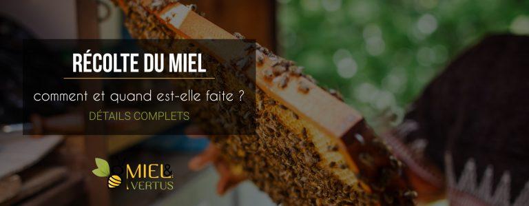 comment-quand-recolte-miel