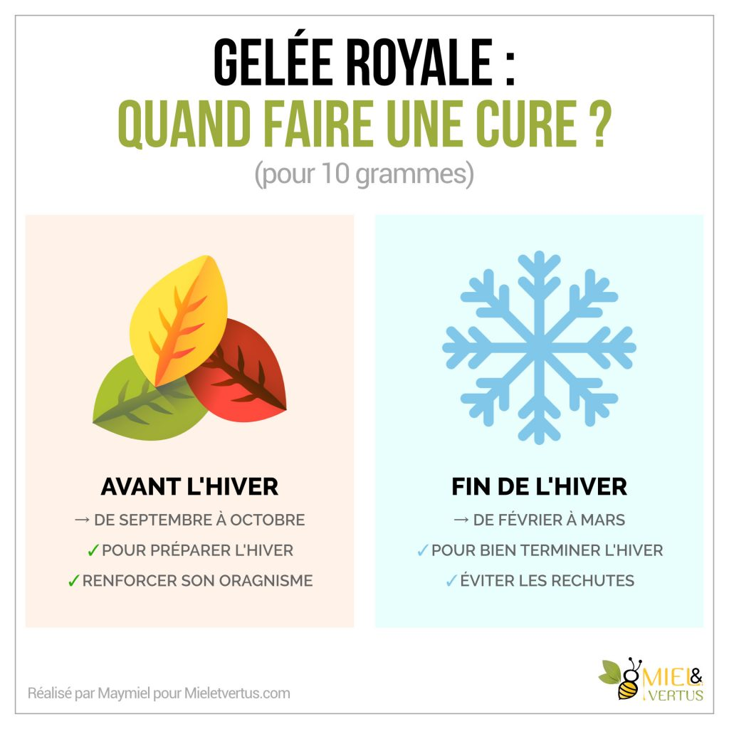 Gelée royale : Bienfaits, Cure, Production & Conservation [Guide complet] 2